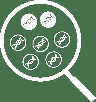 circle-icon